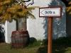 Balatonakali - présházak szőlővel