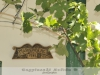 Bóly - Mária-hegyi pincesor