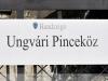 Tokaji borvidék - Havas Sátoraljaújhely - Ungvári öreg pincék – 2021.